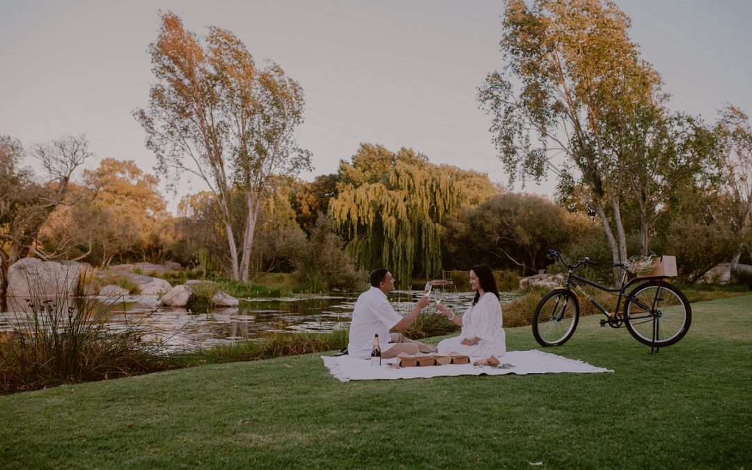 Valentine's at Spier: Your Romantic Winelands Adventure Awaits!