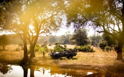 Singita Pamushana is open to guests once more