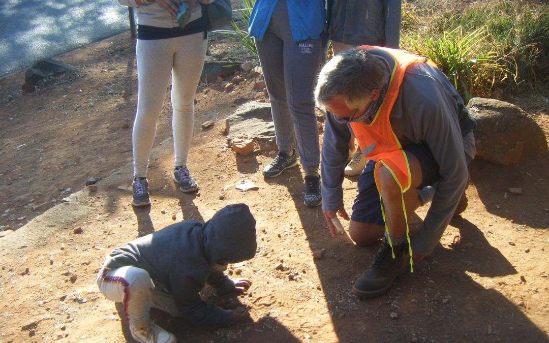 Melville Koppies-A place for young explorers