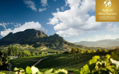 2022 Great Wine Capitals Best of Wine Tourism Awards