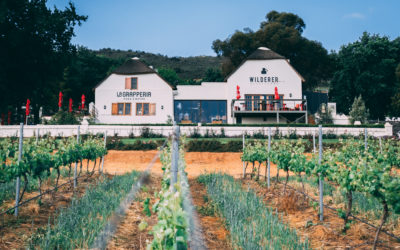 Your Neighbourhood Guide To Paarl This Summer